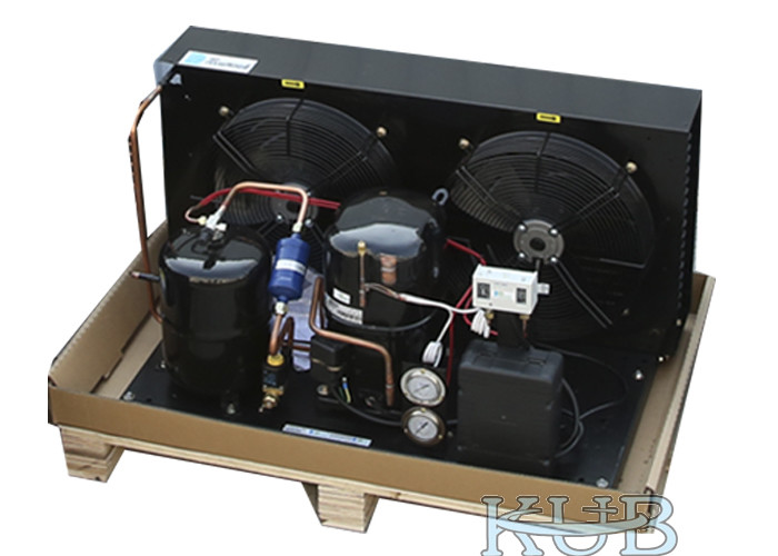 Tag4561Z 5HP Low Temperature Condensing Unit Suitable For Different Refrigerator Long Lifespan